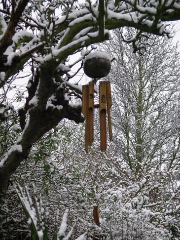 Snow_in_garden